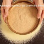 Sai come si fa la pasta? Capitolo 2: dal Grano alla Semola