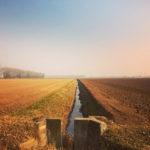 Il Viaggiator Pastaio: al di qua e al di là del Grande Fiume