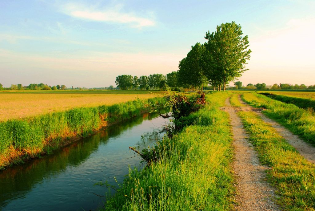 il viaggiator pastaio - il grande fiume 2